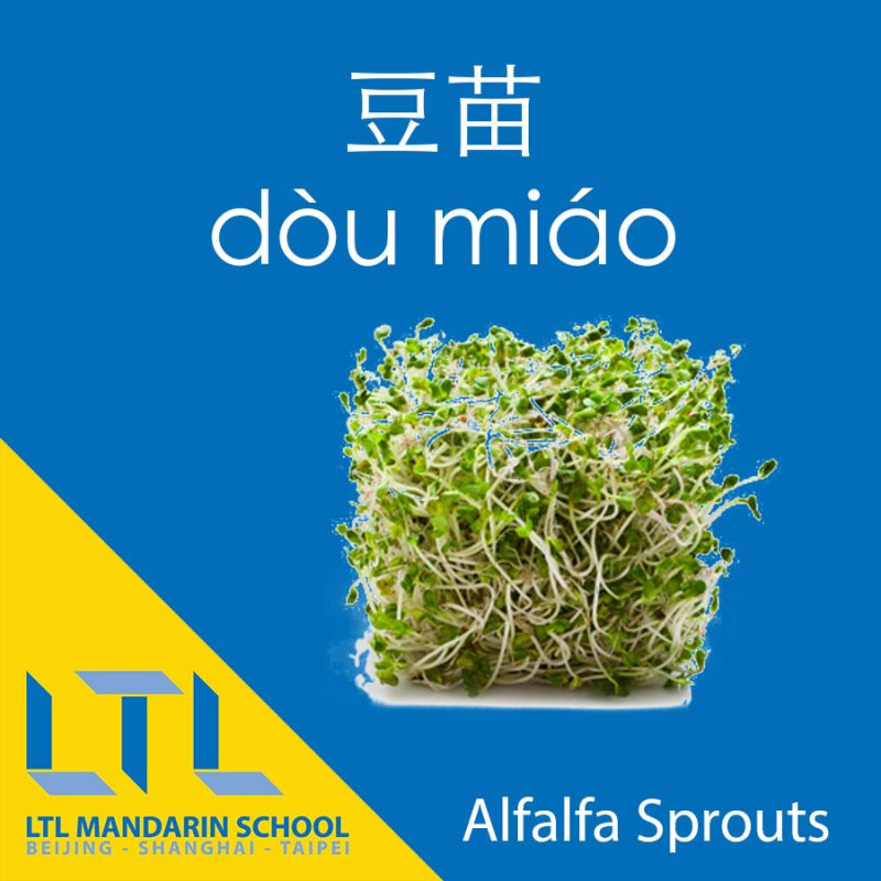 Alfalfa Sprouts in Chinese