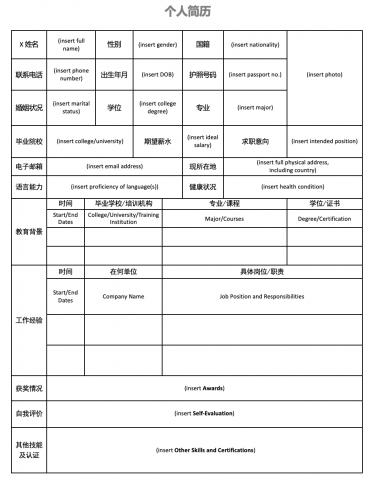 Chinese C.V.