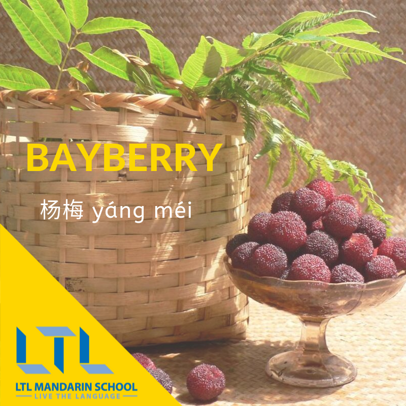 Bayberry in Chinese