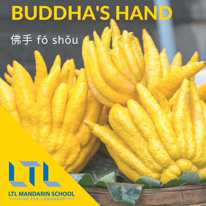 Buddha's hand in Chinese